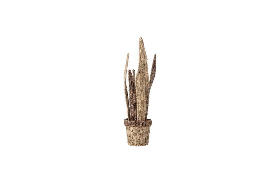 De hecho, deja salir tallos de cactus imitados por la madera