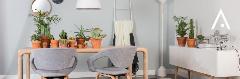Lámparas de techo Zuiver
