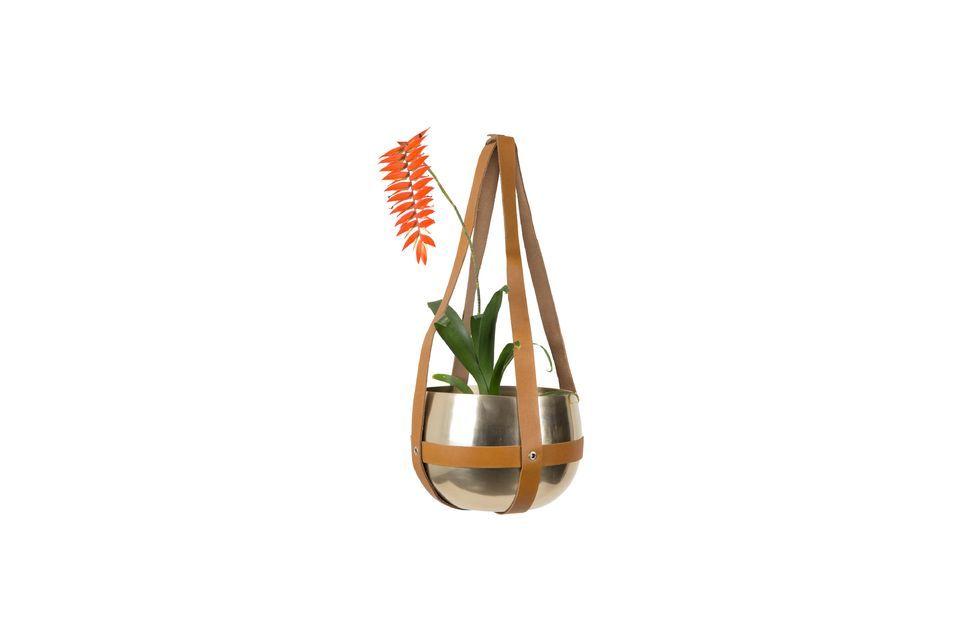 Plantador Oasis - 5