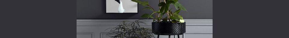 Descriptivo Materiales  Puesto de planta Indien en metal negro